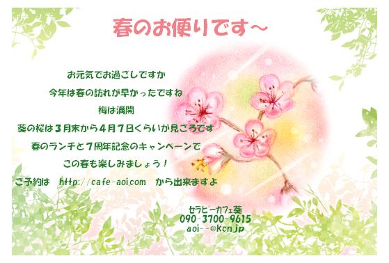 葵の春のお便り